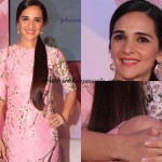 Tara Sharma in a recent press meet