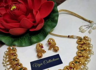Beautiful Peacock choker From Viya Collections