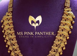 Fancy Kasu Maala From Ms Pink Panthers