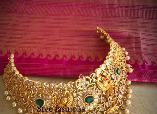 Ethnic Choker From Sree Exotic Silver Jewelleries