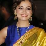 Dia Mirza Jewelleries in Flimfare Awards 2015