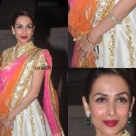 Malaika Arora Khan in the Soha Kunal Wedding