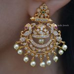 Matte Finish AD Stone Earrings By South India Jewels!