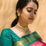 Traditional Choker Set From Aarni by Shravani!